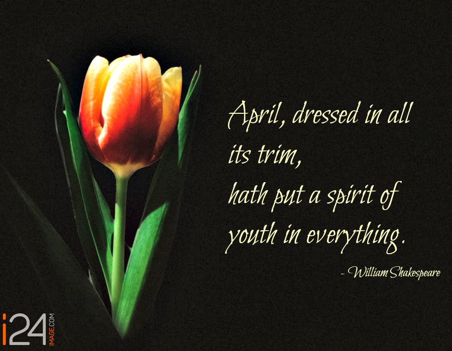 """April Quote Gems """"April hath put a spirit of youth in everything."""